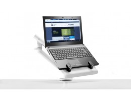FLO Laptopa roka